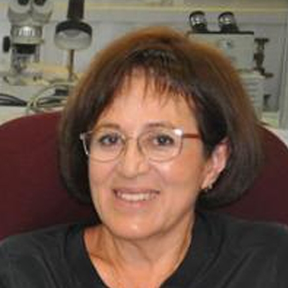 Georgina Izquierdo Montalvo